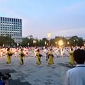 写真: 名古屋みなと祭 2013:総踊り - 06