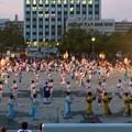 写真: 名古屋みなと祭 2013:総踊り - 11