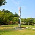 写真: 非常に暑い夏の日の桃花台中央公園 - 2