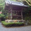 写真: 見性寺 - 09