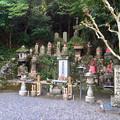写真: 見性寺 - 10