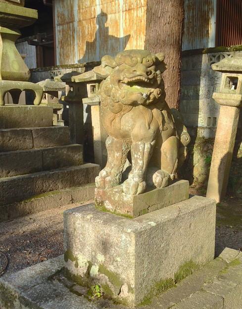 内々神社:狛犬 - 3