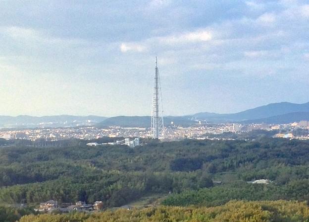 愛・地球博記念公園:観覧車内から見た瀬戸デジタルタワー - 4