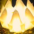 写真: 東山植物園 紅葉ライトアップ 2013 No - 112:花のイルミネーション