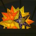 写真: 東山動植物園 星が丘門前の「星のイルミネーション」No - 3