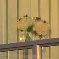 写真: 東山動植物園 No - 124:ガーデンテラス東山の結婚式用(?)ホールの扉