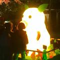 写真: 東山植物園 紅葉ライトアップ 2013 最終日 No - 02:星が丘門前のズーボのイルミネーション前で写真を撮る人々