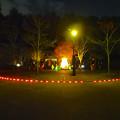 写真: 東山植物園 紅葉ライトアップ 2013 最終日 No - 06:星が丘門前のズーボのイルミネーション前で写真を撮る人々