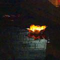 写真: 東山植物園 紅葉ライトアップ 2013:池に浮かばせた花型の灯籠 No - 1