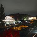 写真: スカイビュートレイン「植物園駅」から見た、ライトアップされたフラワーステージ - 1