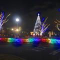 写真: ノリタケの森のクリスマスイルミネーション 2013 No - 02