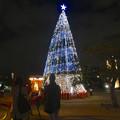 写真: ノリタケの森のクリスマスイルミネーション 2013 No - 20
