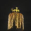 写真: ノリタケの森のクリスマスイルミネーション 2013 No - 38:トナカイのイルミネーション