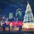 写真: ノリタケの森のクリスマスイルミネーション 2013 No - 47