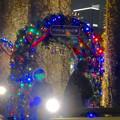 写真: ノリタケの森のクリスマスイルミネーション 2013 No - 64
