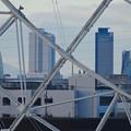 写真: シートレインランドの大観覧車越しに見た、名駅ビル群 - 3