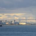 写真: 名古屋港水族館から見た、夕暮れ時の名港中央大橋 - 6