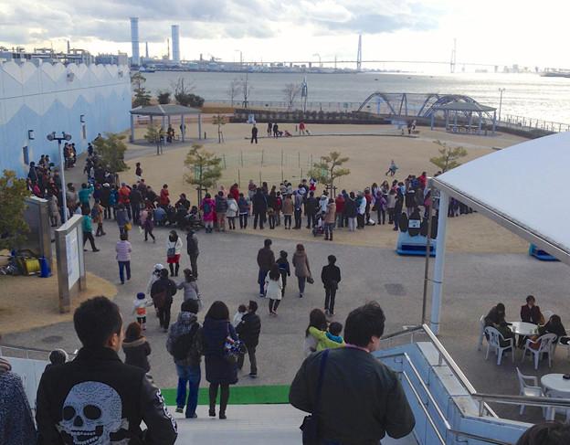 写真: 名古屋港水族館ペンギンよちよちウォーク 2013年12月 No - 03:会場となる「しおかぜ広場」