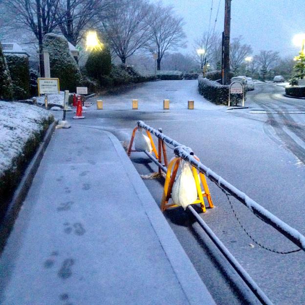薄っすらと道路に積もった雪、そして足跡 - 04