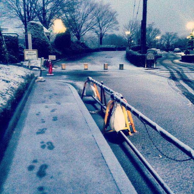 薄っすらと道路に積もった雪、そして足跡 - 05