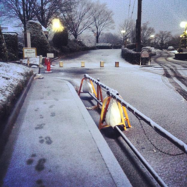 薄っすらと道路に積もった雪、そして足跡 - 07