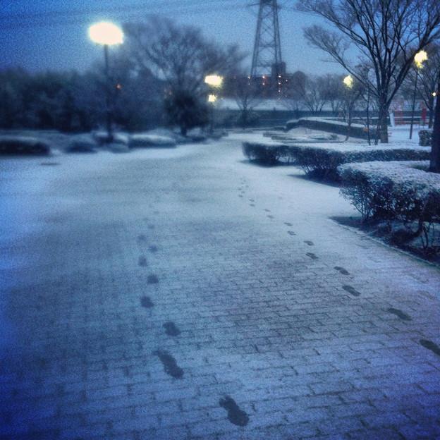 薄っすらと道路に積もった雪、そして足跡 - 11