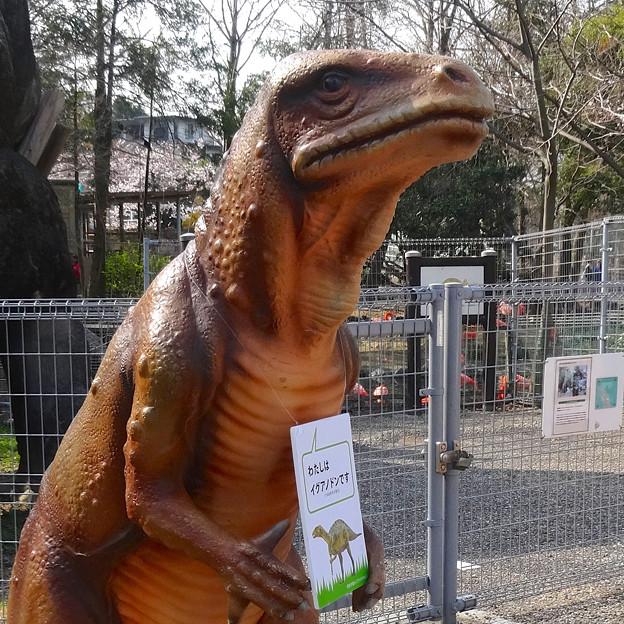 東山動植物園 春まつり 2014:福井県立恐竜博物館のPRブース - 09