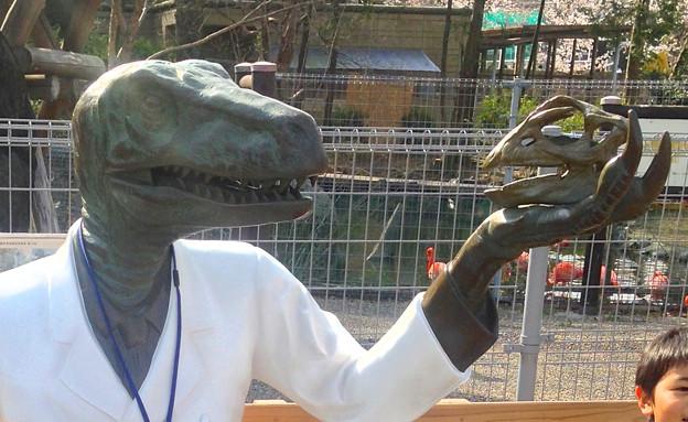東山動植物園 春まつり 2014:福井県立恐竜博物館のPRブース - 11