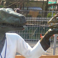 Photos: 東山動植物園 春まつり 2014:福井県立恐竜博物館のPRブース - 11