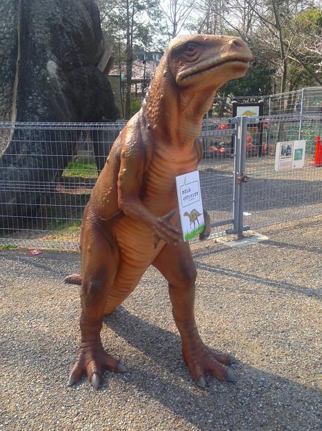 東山動植物園 春まつり 2014:福井県立恐竜博物館のPRブース - 12