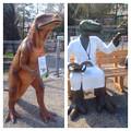Photos: 東山動植物園 春まつり 2014:福井県立恐竜博物館のPRブース - 13