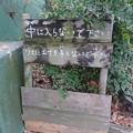 Photos: 東山動植物園 小鳥とリスの森 No - 01:リスへの餌やりに対する注意書き