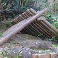 写真: 東山動植物園:炭焼き小屋 - 2