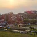 写真: 夕暮れ時の田んぼと丘陵地 - 1
