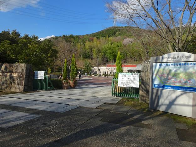 グリーンピア春日井 No - 006:入口