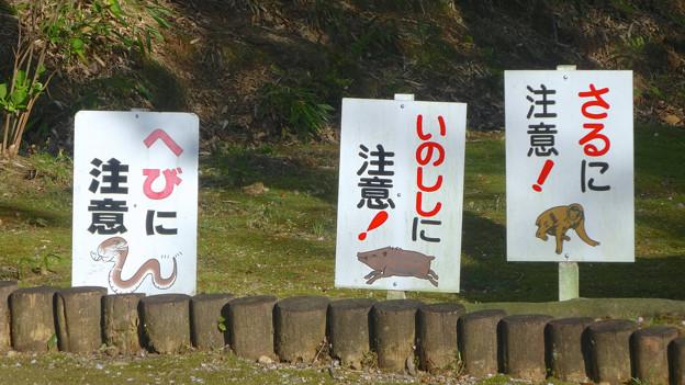 グリーンピア春日井 No - 025:猿・猪・蛇に注意!!