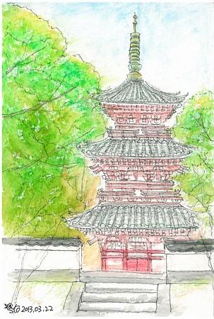 20130323尾道西國寺三重の塔