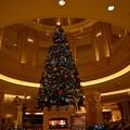 クリスマス・イルミ2013_4