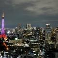 Photos: サクラ色タワー