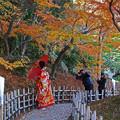 紅葉と前撮り花嫁