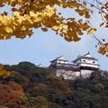 空に浮かぶ松山城