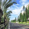 沖縄街路地