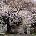 松山札之辻記念碑