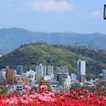 春霞の松山城