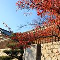 二ノ丸史跡公園の秋