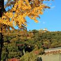 秋空のお城