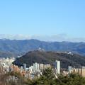 早春の松山城