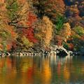 写真: 中禅寺湖千手ヶ浜