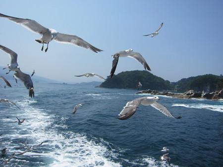 浄土ヶ島、遊覧船