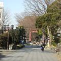 氷川神社の二ノ鳥居